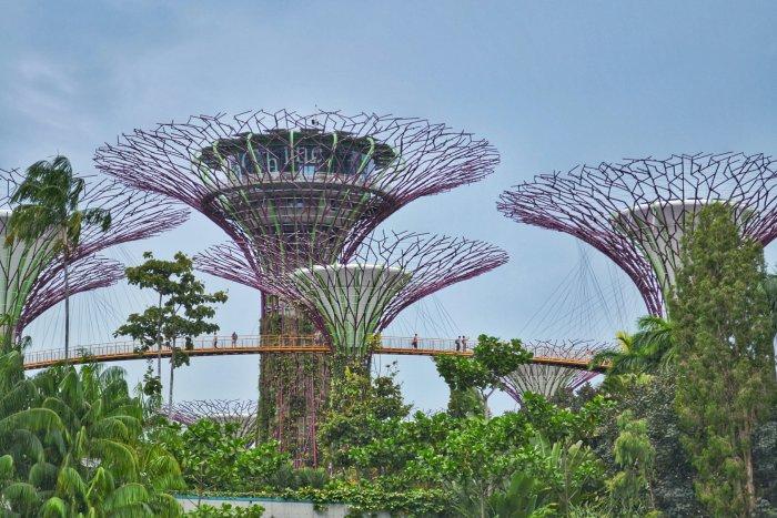 10_oktober_singapur-02439175720.jpeg